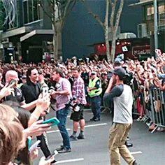 Tom Hiddleston in Brisbane. Video: https://www.instagram.com/p/BJcMXyRgrlr/