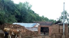 ΚΟΝΤΑ ΣΑΣ: Σοκ στην Κίνα: Σκότωσε τα παιδιά της και αυτοκτόνη...