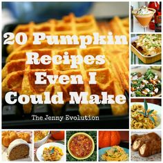 20 Pumpkin Recipes Even I Could Make!!!! The Jenny Evolution #recipe #pumpkin