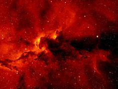 "IC 1396 is an enormous nebula, stretching over hundreds of light years in the constellation Cepheus. It glows red because hot young stars energize the hydrogen gas. (Photo: Nick Wright)  ©Mona Evans, ""Nebulae"" http://www.bellaonline.com/articles/art43407.asp"