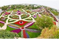 The largest hanging garden The Al Ain paradise park in Al Zakher area holds the Guinness world record for having largest number of hanging flower basket,there is about 10 million flowers decorated with other beautiful elements. Famous Gardens, Amazing Gardens, Beautiful Gardens, Landscape Design, Garden Design, Million Flowers, Miracle Garden, Gardens Of The World, Hanging Flower Baskets