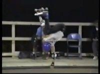 Vídeo com imagens ineditas de vários icones do skate mundial direto dos anos 80 precisamente direto do ano de 1988 de Ohio com o Skate Out NSA, mais uma grande competição que juntava skatistas mestres em Half Pipe.