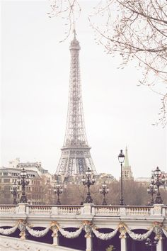 The stunning Eiffel Tower rises above Paris with the Pont Alexandre III in the forefront. This was taken in the winter, so the trees are not obstructing the view. Isn't she lovely?  Isn't She Lovely by Rebecca Plotnick | $225