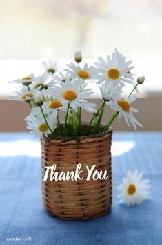 Thank You Card Sayings, Thank You Quotes Gratitude, Thank You Wishes, Thank You Images, Thank You Stickers, Thank You Gifts, Thank You Cards, Good Morning Beautiful Images, Good Morning Flowers