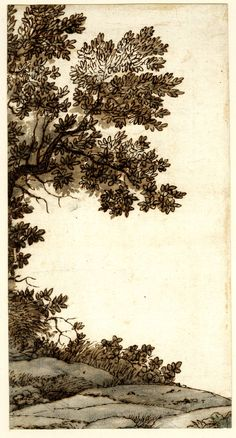 Claude Lorrain: Drawing of ground and tree; landscape, the tree only partially visible. c.1665 Pen and brown ink, with grey and brown wash, over graphite / The British Museum