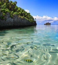 Roatan Island, Honduras | westbaytours