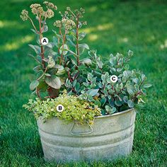 Create a Low-Care Container