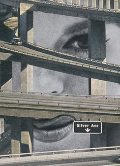 Sammy Slabbinck Collage Art and Illustration