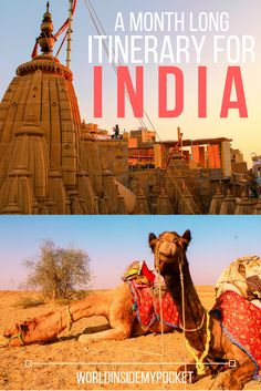 1 month India itinerary covering what I believe to be the top 10 destinations in India! Includes super vital information on when to visit India, what to see in India, how best to travel between cities and more! #india #indiaitinerary #monthinindia #indiaguide #loveindia #rajasthan #uttarakhand #rajasthanitinerary #uttarakhanditinerary