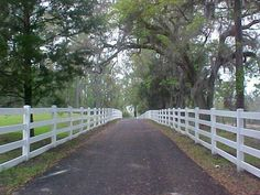 I love the long driveway with white fencing. Would love horses in the fields behind the fences.