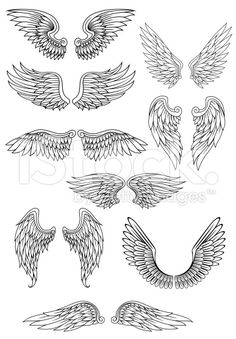 Heraldic bird or angel wings set royalty-free stock vector art