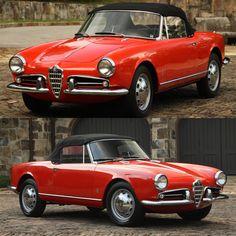 Alfa Romeo Giulietta Spider, Alfa Giulia, Alfa Romeo Cars, Automotive Art, All Cars, Vintage Italian, Cars Motorcycles, Vintage Cars, Classic Cars