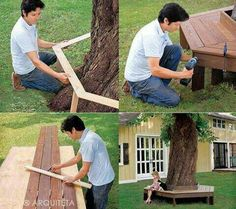 Around tree seating