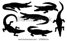 stock-vector-crocodile-silhouettes-on-the-white-background-278956424.jpg (450×277)