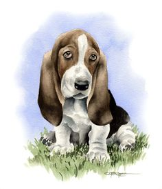BASSET HOUND PUPPY Dog Art Print Signed by Artist by k9artgallery