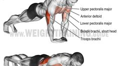 Diamond push-up exercise
