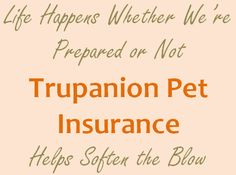 Life Happens, Trupanion Pet Insurance for Dogs    http://www.keepthetailwagging.com/pet-insurance-for-dogs/#
