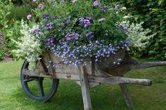 Container Plants, Container Gardening, Dream Garden, Garden Art, Garden Junk, Wheelbarrow Planter, Wagon Planter, Barrel Planter, Flower Cart