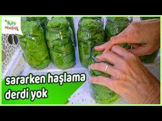 Yapraklarınız 2 Yıl Taze Kalacak ✅ %100 Garantili Tarif 💯 Kavanoza Asma Yaprağı Nasıl Kurulur ? - YouTube Vine Leaves, Turkish Recipes, Winter Food, Food Art, Pickles, Cucumber, Recipies, Food And Drink, Cooking