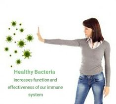 Healthy bacteria helps immune system. Any thoughts?  Visit goprobioticbenefits.com  #probiotics #probioticskincare #probioticsupport #probioticsforlife #probioticsupplement #probioticsforthewin #probioticsoda #guthelath #probiotics101 #guthealthmatters #guthealthy #guthealthiskey #guthealthiseverything