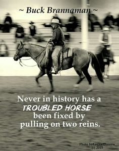 So true, dealt with many troubled horses and the more you pull on the reins the more they freak out and fight you. Better to take your time and go slow and gentle.