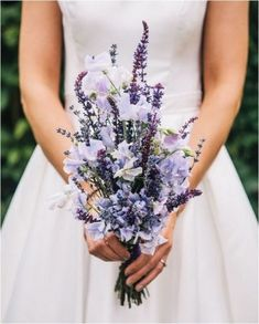 Hottest 7 Spring Wedding Flowers to Rock Your Big Day--lavender and sweet peas wedding bouquets, purple wedding colors Spring Wedding Bouquets, Summer Wedding, Dream Wedding, Wedding Dresses, Trendy Wedding, Wedding Simple, Bridal Bouquets, Relaxed Wedding, Sweet Pea Wedding Bouquet