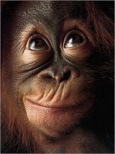 Adorable funny face...
