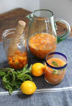 Kumquat- 金柑のノンアルコールカクテル