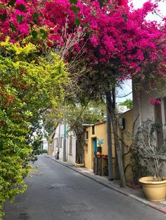 Neve Tzedek, bairro elegante de Tel-Aviv, Israel Old Jaffa, Tel Aviv Israel, City Wallpaper, Holy Land, Jerusalem, Middle East, Colorado, Camels, Vacation