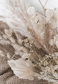 Wallpaper Effective pictures we offer through Colorful interiors stairs A quality picture can tell y Dried Flower Bouquet, Dried Flowers, Dried Flower Arrangements, White Flowers, Flower Wallpaper, Iphone Wallpaper, Beige Wallpaper, Beige Aesthetic, Photo Images