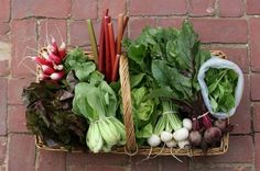Urban Digs CSA with free delivery. The cost of one share for the 2012 season is $720.
