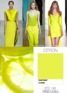 ss16-color-CITRON-101514.jpg