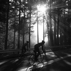 The long Sunday  ride....
