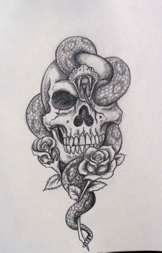 Skull & Snake Sketch