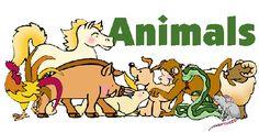 Pàgina per trobar INFORMACIÓ sobre ANIMALS. Elaborat per Isabel Ferrer i Òscar Beltràn.