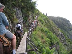 Mule ride in Kalaupapa - Molokai / Hawaii  ->waooow!! Very steep, on a stubborn mule, all the way down to the leper colony. What a great experience.
