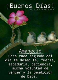 Feliz inicio de semana... 🌷 - Maritza González Troz - Google+ Good Night I Love You, Good Morning Good Night, Cute Good Morning Quotes, Good Morning Messages, Mr Wonderful, Religious Quotes, Spiritual Quotes, Images Lindas, Three Little Birds