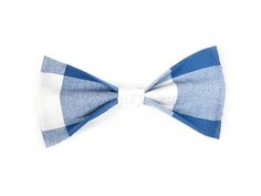 Picnic Bowtie / Stars and Stripes 2015