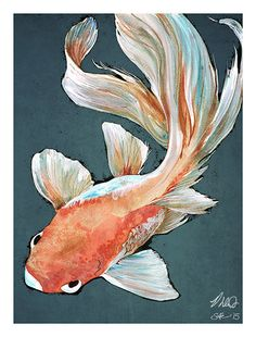 Fantail Goldfish 12.5 x 9.5 colour art print by Mygrimmbrother