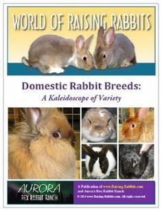 Domestic Rabbit Breeds: A Kaleidoscope of Variety, a World of Raising Rabbits e-book from Raising-Rabbits.com