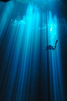 Amazing shot! The Pit cenote
