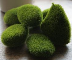 The recipe:To make your moss solution you're going to need the following: ◾Moss ◾Plain yogurt/Buttermilk/Beer ◾Blender ◾Brush (optional) ◾Corn syrup (optional) ◾Weak bleach solution (optional)