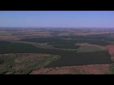 Sustainable Production: Our environmental and social commitment - YouTube