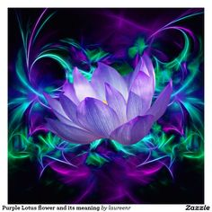 purple_lotus_flower_and_its_meaning_poster-re14f97496b3d4a20aa5e3a6c7a39ada3_is5s3_8byvr_1024.jpg (1104×1104)