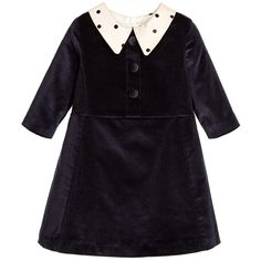 Hucklebones London Navy Blue Velvet Dress with Beige Dotty Collar at Childrensalon.com