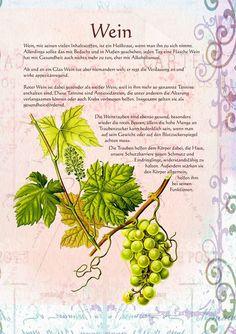 Wein http://www.kraeuter-verzeichnis.de/ >  Vitis vinifera-Viiniköynnös