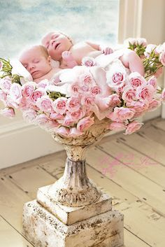 Sleeping twins among a bed of roses, what could be more heavenly. Ruffles And Roses Photography