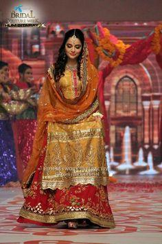 5e2b51465202 137 Best Bridal Mehndi dresses images