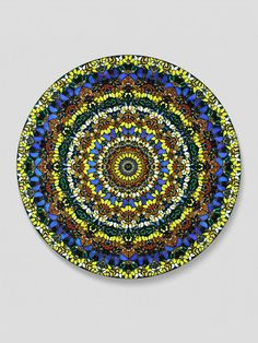 Damien Hirst  Butterfly Kaleidoscope - totally awesome!!