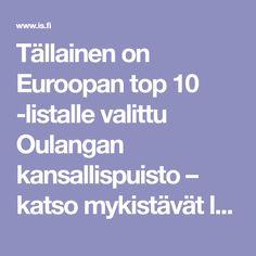 Tällainen on Euroopan top 10 -listalle valittu Oulangan kansallispuisto – katso mykistävät luontokuvat - Matkat - Ilta-Sanomat